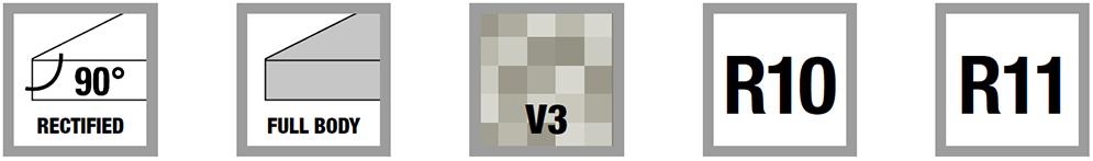 icone rectified full body V3 R10 R11