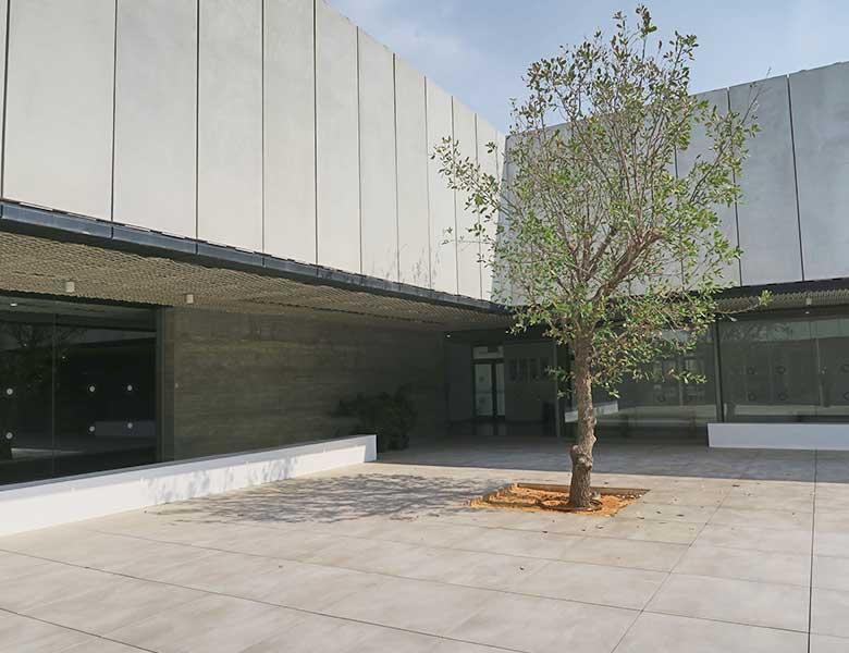 Pavimento in pietra sinterizzata Centro culturale di danza Herzliya, Israele